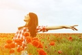 Picture field, freedom, leaves, girl, the sun, joy, flowers, red, smile, background, Wallpaper, mood, woman, Mac, ...