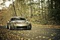 Picture road, foliage, 350z, Nissan, autumn