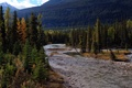 Picture forest, trees, mountains, river, stones, Canada, Mount Robson Provincial Park