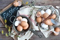 Picture holiday, Easter, willow twigs, basket of eggs