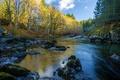 Picture autumn, forest, river, stones, Canada, Gordon River