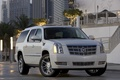 Picture cadillac, SUV, escalade, platinum