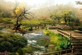 Picture Japan, river, bridges, Sakura