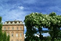 Picture the building, roses, Italy, Italy, Piemonte, Piedmont, Venaria Reale, Venaria Reale