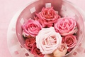 Picture basket, roses, color