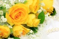 Picture flowers, beads, yellow, bouquet, roses, flower, pearl, petals, yellow, beautiful, pearl, buds