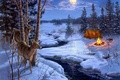 Picture animals, spruce, axe, snow, winter, painting, the fire, the moon, tent, Darrell Bush, stream, Moon ...