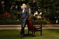 Picture look, Leonardo DiCaprio, nature, Leonardo DiCaprio, actor, male, greens, chair