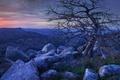 Picture USA, stones, Wichita Mountains National Wildlife Refuge, Mount Scott, Oklahoma, tree, dawn, mountains
