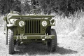 """Picture world, Second, times, Jeep, car, patency, high, army, the front, """"Willis-MV"""", war, grass, Willys MB"""