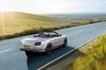 Picture speed, Black Edition, road, Bentley, machine, Speed, car, Continental, sports car
