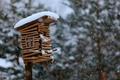 Picture bokeh, birdhouse, snow, birdhouse