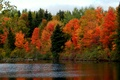 Picture the sky, autumn, river, trees, forest