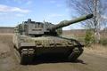 Picture leopard, birch, tank