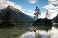 Picture mountains, Austria, trees, Ramsau, lake, forest, clouds, the sky, rocks, stones