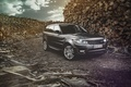 Picture Luxury, Car, Diesel, English, Land Rover, Range Rover, Forrest, Sport, Nature, Front, 4x4, Wood