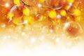 Picture bubbles, leaves, autumn, leaves, sprig, bubbles, twigs, glosses, glitter, autumn