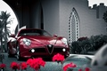Picture flowers, competition, alfa romeo