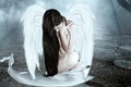 Picture sadness, girl, trees, fiction, hair, wings, angel, sitting