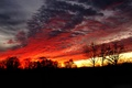 Picture the sky, silhouette, glow, trees, clouds, sunset