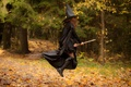Picture girl, broom, cloak, flight, magic, brown hair, black, witch, forest