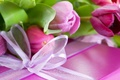 Picture flower, purple, leaves, flowers, lilac, pink, holiday, box, gift, Tulip, petals, tape, bow, congratulations, packaging, ...