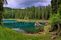 Picture forest, clouds, trees, mountains, lake, stones