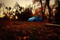 Picture Beetle, cemetery, trees, Volkswagen, graves, autumn, leaves