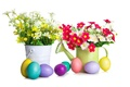 Picture flowers, holiday, eggs, Easter