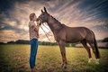 Picture field, girl, horse