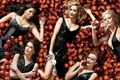 Picture ladies, the series, Desperate Housewives, on apples