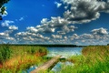Picture boat, the bridge, forest, backwater, the sky, river, clouds