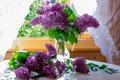 Picture lilac, window, bouquet
