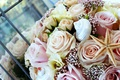 Picture flowers, shell, starfish, bouquet