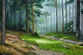 Picture picture, fog, pine, trees, painting, Sunny morning, summer, Lutsenko, landscape, grass, forest