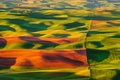 Picture Steptoe Butte State Park, field, carpets, nature, hills, valley, USA