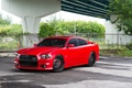 Picture Auto, Bridge, The fence, Trees, Tuning, Mesh, Machine, Dodge, SRT8, Charger
