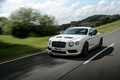 Picture 2014, Continental, Bentley, GT3-R