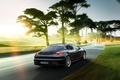 Picture 2015, Porsche, Panamera, Porsche, trees, Panamera