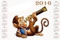 Picture monkey, calendar, calendar, 2016, monkey