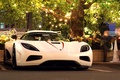 Picture hypercar, tree, garland, koenigsegg, light, white, Agera R