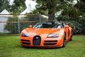 Picture veyron, vitesse, bugatti