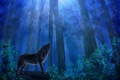 Picture forest, the sky, leaves, trees, night, animal, wolf, predator, painting, blue, noona