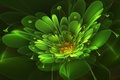 Picture flower, abstraction, green, fractal