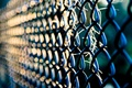 Picture macro, mesh, widescreen, widescreen, background, widescreen, the fence, HD wallpapers, Wallpaper, the fence, full screen, ...