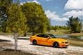 Picture trees, nature, BMW, coupe, bmw m3
