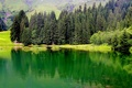 Picture lake, mountains, France, grass, trees, Haute-Savoie