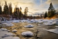 Picture water, snow, ice, winter, trees, forest