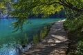 Picture Luggage, tree, water, Croatia, summer, track, Plitvice lakes