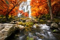 Picture river, Nature, water, trees, forest, scenery, forest, waterfall, trees, autumn, autumn, waterfall, water, view, nature, ...